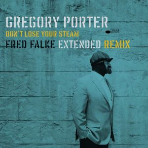 Don't Lose Your Steam (Fred Falke Extended Remix) - Single