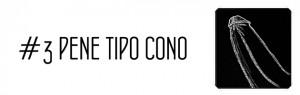 pene_cono_3