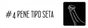 pene_seta_4